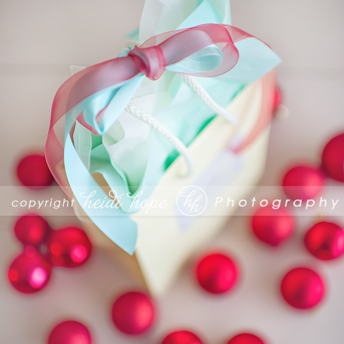 Gift bag for Gift certificates at Heidi Hope Photography in Warwick RI