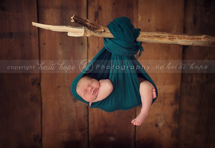 Newborn boy sleeping hanging from branch - Heidi Hope