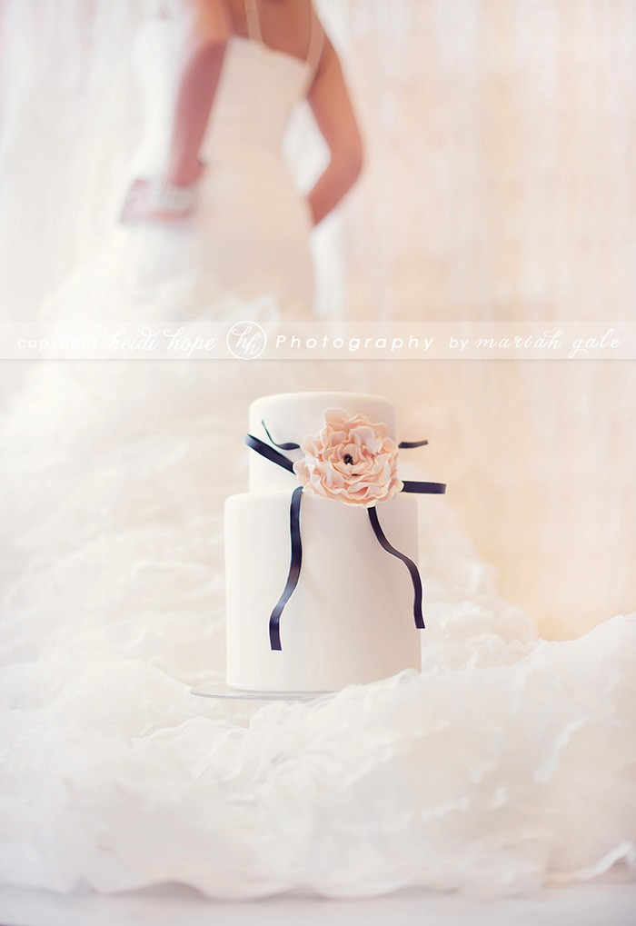 Cake on dress train - Heidi Hope Photography