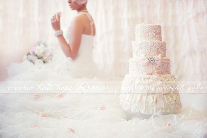 Heidi Hope Photography - Pink and lace cake on dress train