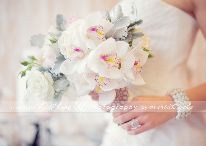 Beautiful Flowers - Heidi Hope Photography
