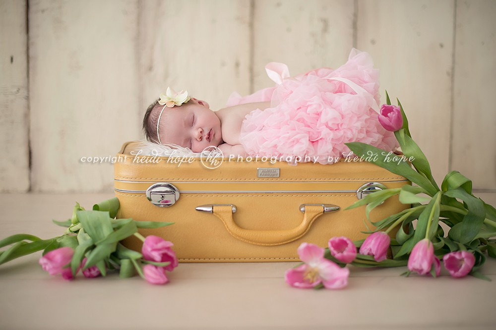 newborn on suitcase