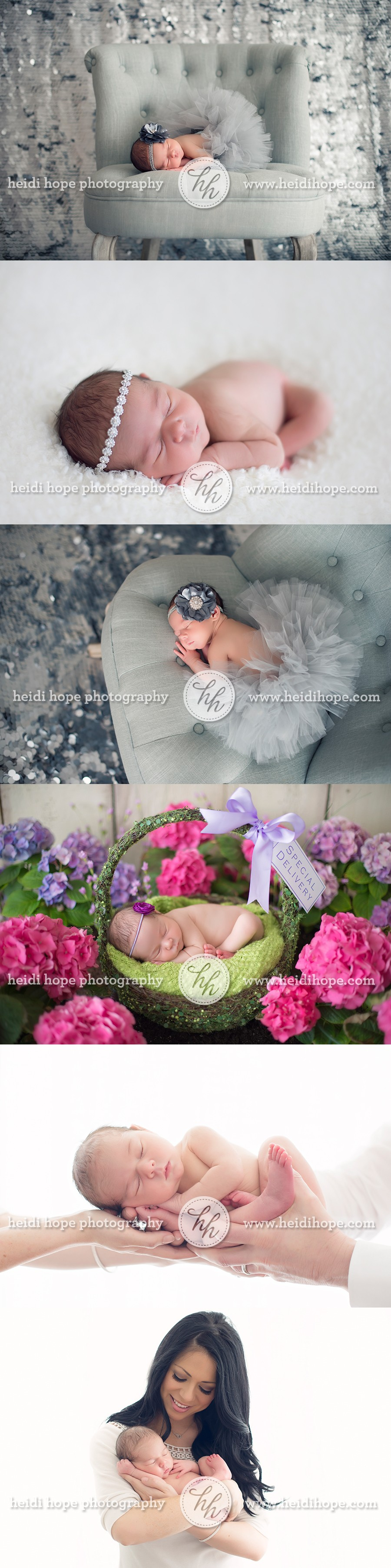 newborn princess in flower garden