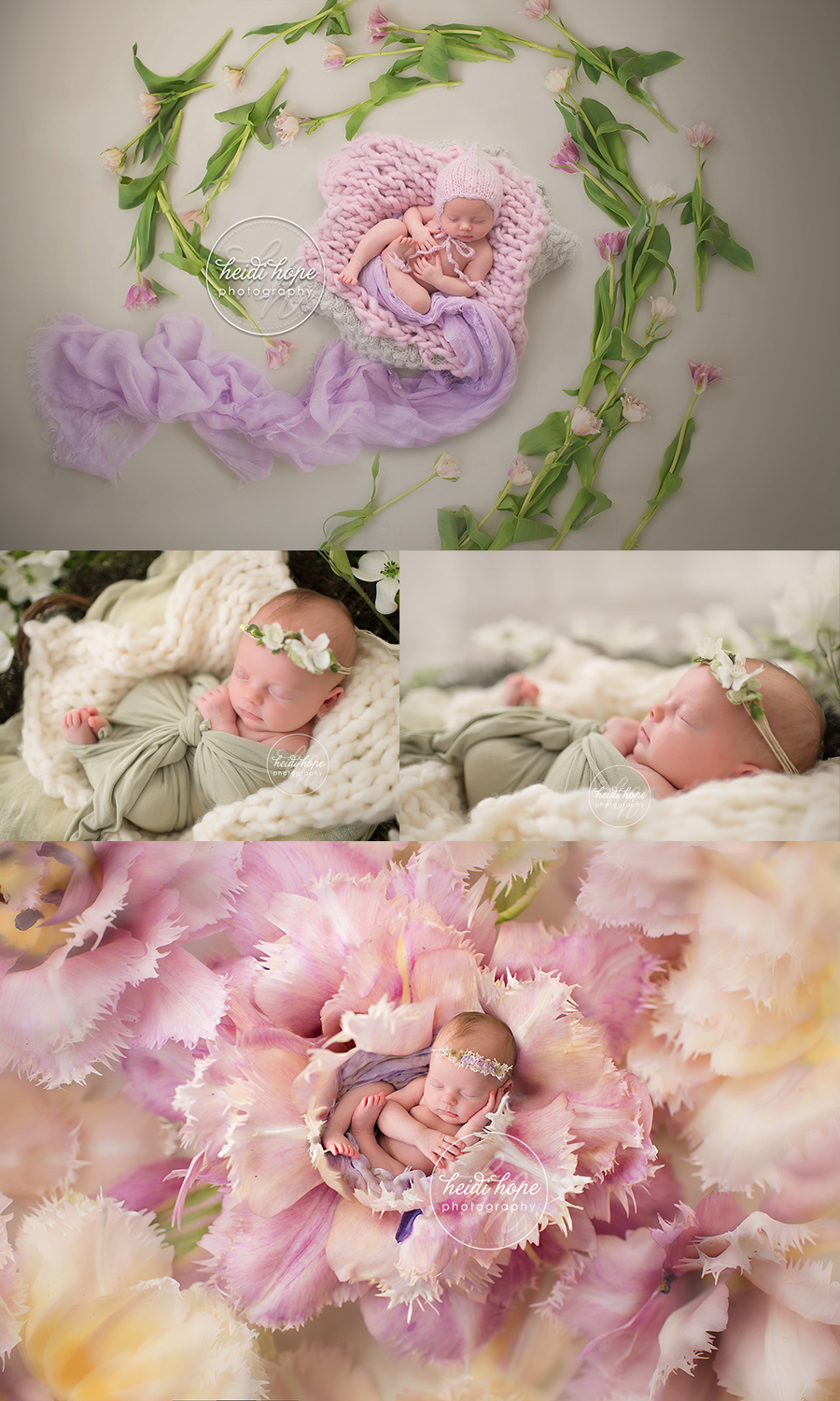 boston newborn photography