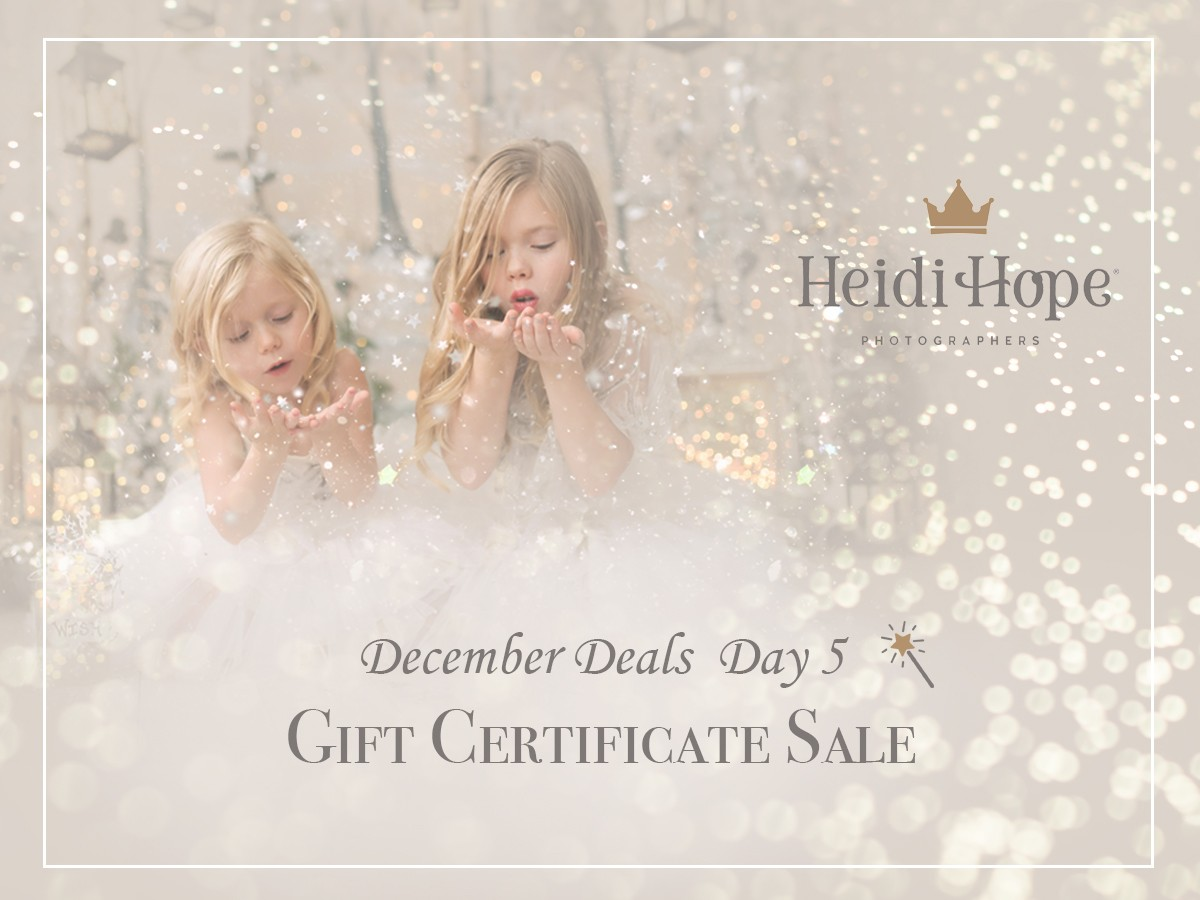 Gift Certificate Sale for Heidi Hope Photography