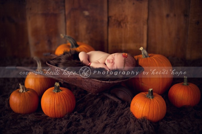 fall family maternity picture ideas - Sweet baby B Autumn newborn portraits