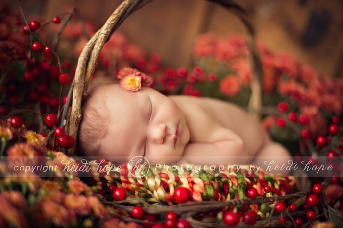 winter maternity photo ideas - Sweet baby B Autumn newborn portraits